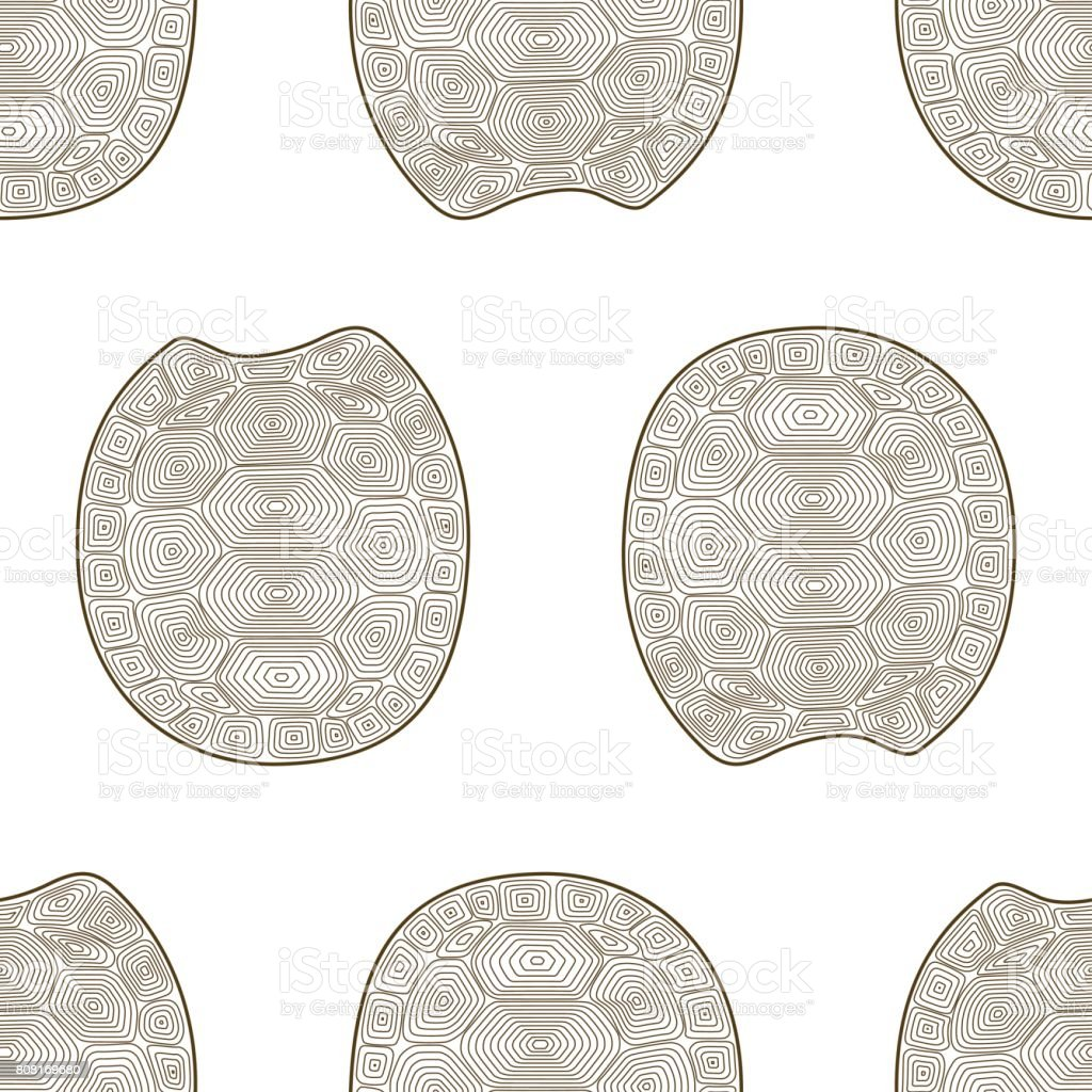 Carapace turtle  seamless pattern. Coloring book wildlife animal. Wallpaper shell tortoise. vector art illustration