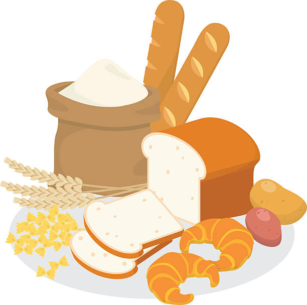 Carbohydrate Vector Art & Graphics | freevector.com