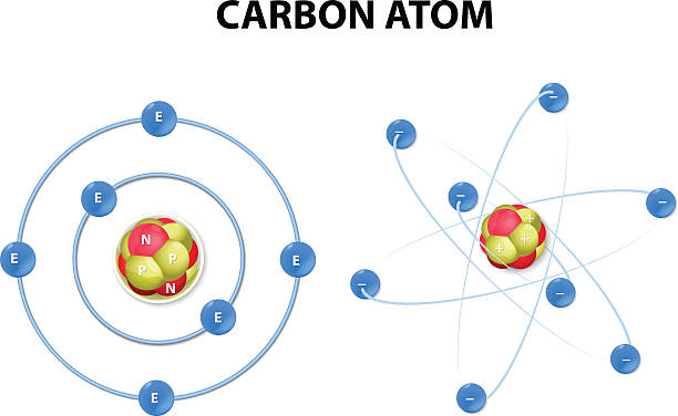 Carbon atom on white background. structure This vector diagram shows the protons, neutrons, and electrons of a carbon atom. Each is in a group of six. That makes the atom very stable. This type of model is now widely considered a sound basic version. atom stock illustrations