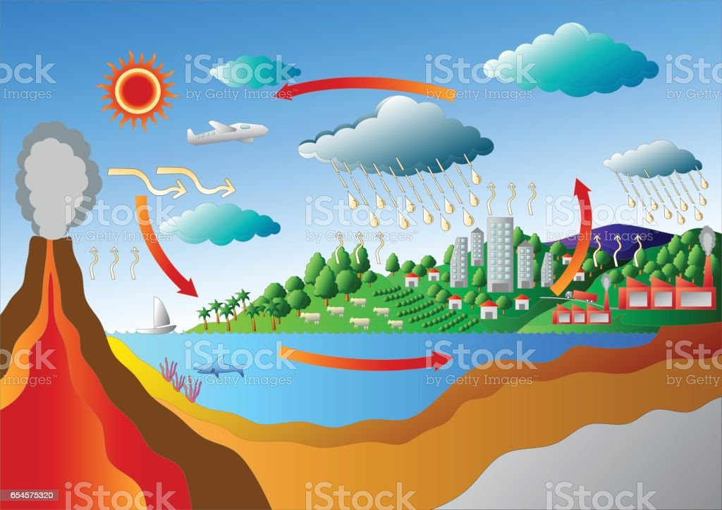 Carbon Cycle And Sulfur Cycle Diagram Vector Stock Vector Art More