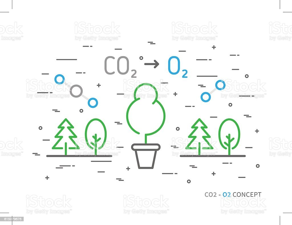 Co2 Carbon Dioxide To O2 Oxygen Colorful Linear Vector Illustration