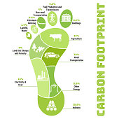 Carbon footprint infographic. CO2 ecological footprint scheme. Greenhouse gas emission by sector. Environmental and climate change concept. True data from report. Hand drawn vector illustration.