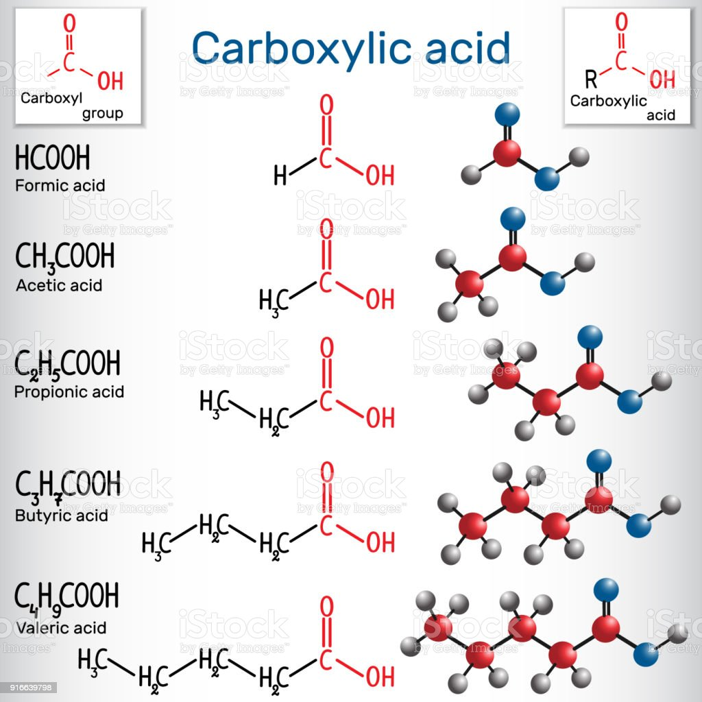 Carboxylic acids (formic, acetic, propionic, butyric, valeric). Homologous series of straight-chain, saturated carboxylic acids vector art illustration
