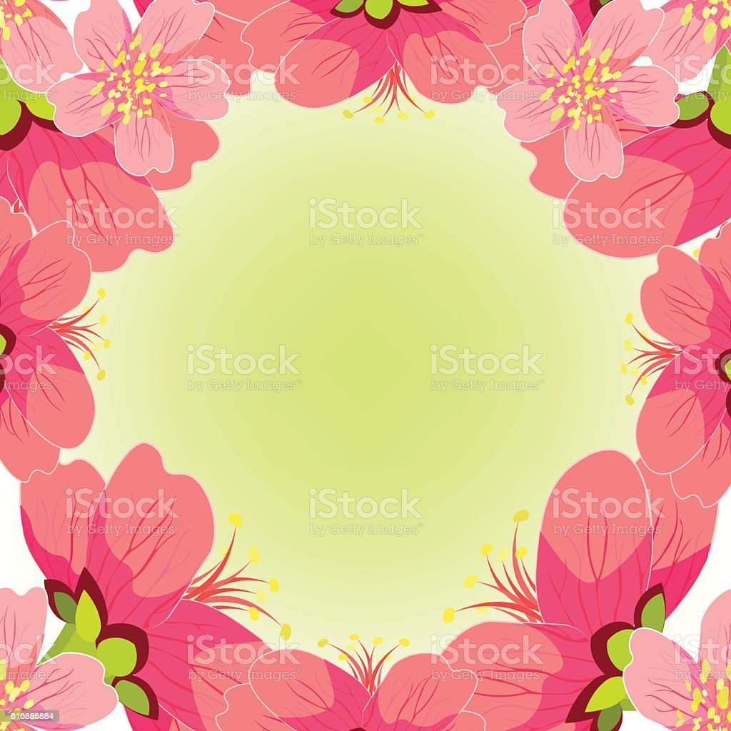 Card Japanese and Chinese cherry. vector illustration vector art illustration