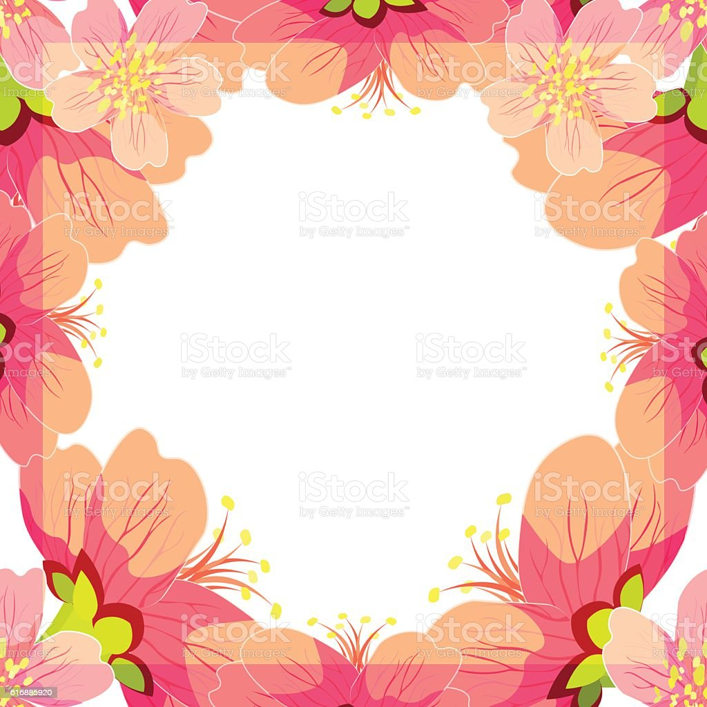 Card Japanese and Chinese flowering cherry. vector illustration vector art illustration