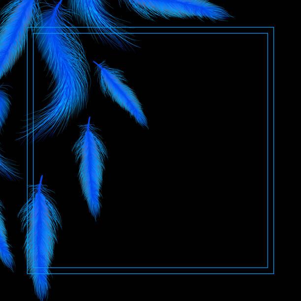 Karte oder Einladung mit blauen Federn – Vektorgrafik
