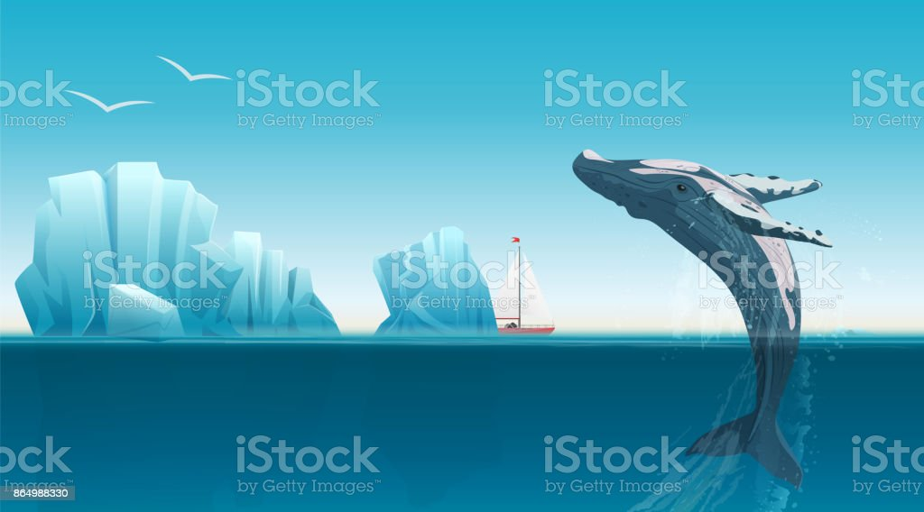 Card template with whale jumping under the blue ocean surface near icebergs. Winter arctic vector illustration. Iceland. vector art illustration