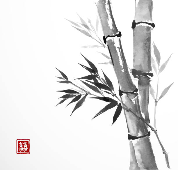 Card with bamboo on white background vector art illustration
