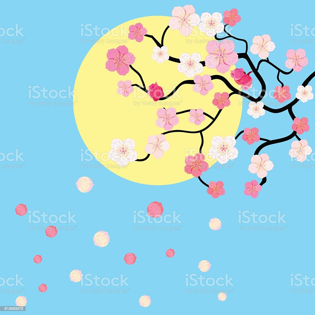 card with blossoms Japanese cherry against the sky. vector illus vector art illustration