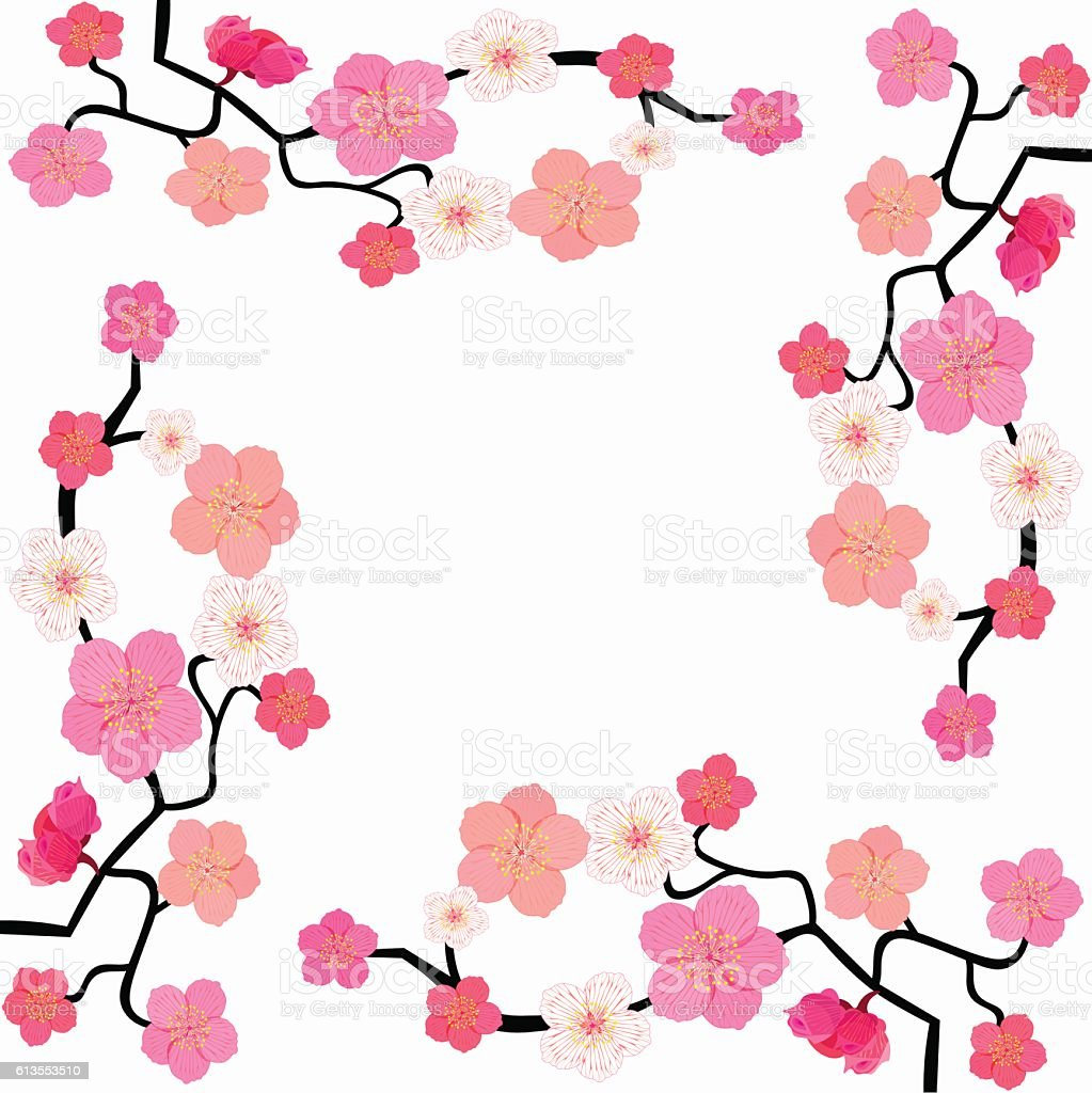 card with blossoms Japanese cherry. vector illustration vector art illustration