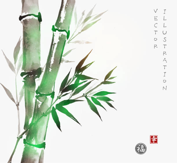 Card with green bamboo in sumi-e style. vector art illustration
