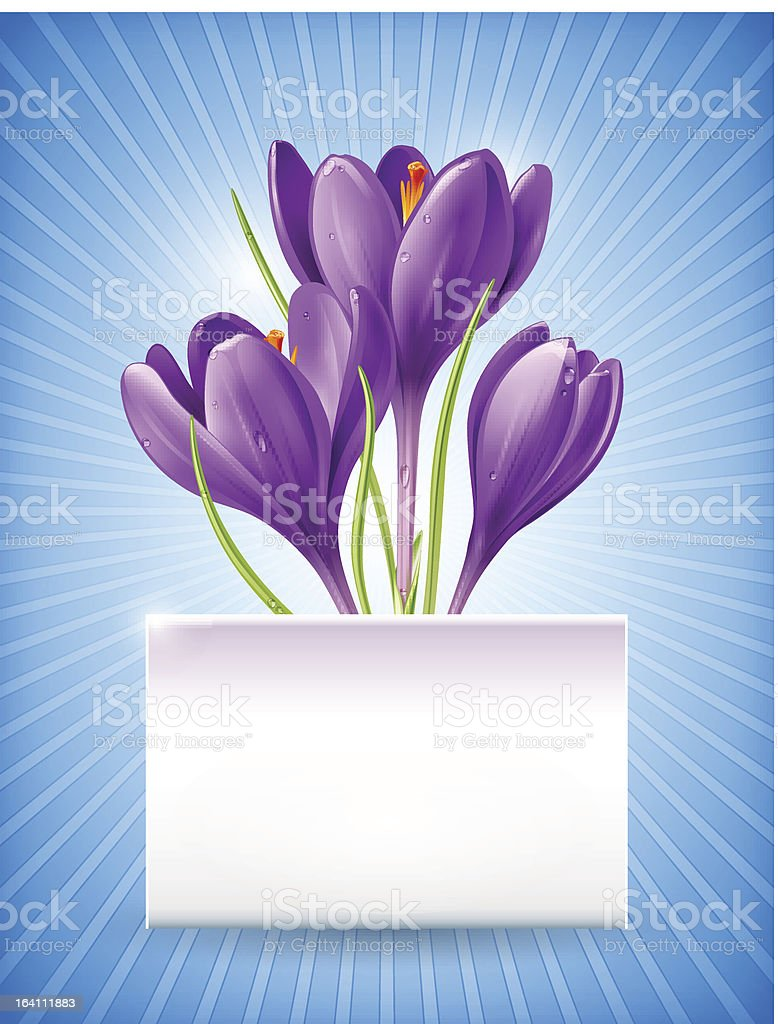 Card with spring flowers royalty-free stock vector art
