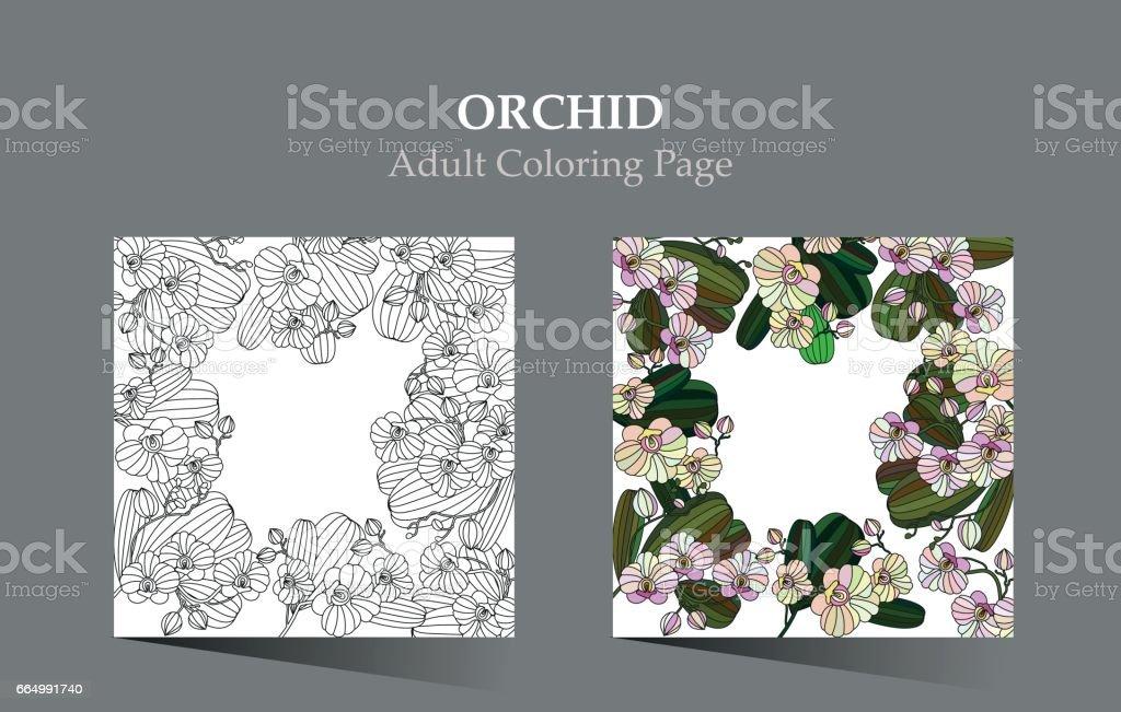 Ilustración de Tarjeta Con Flores Tropicales Orquídea Puede Ser ...