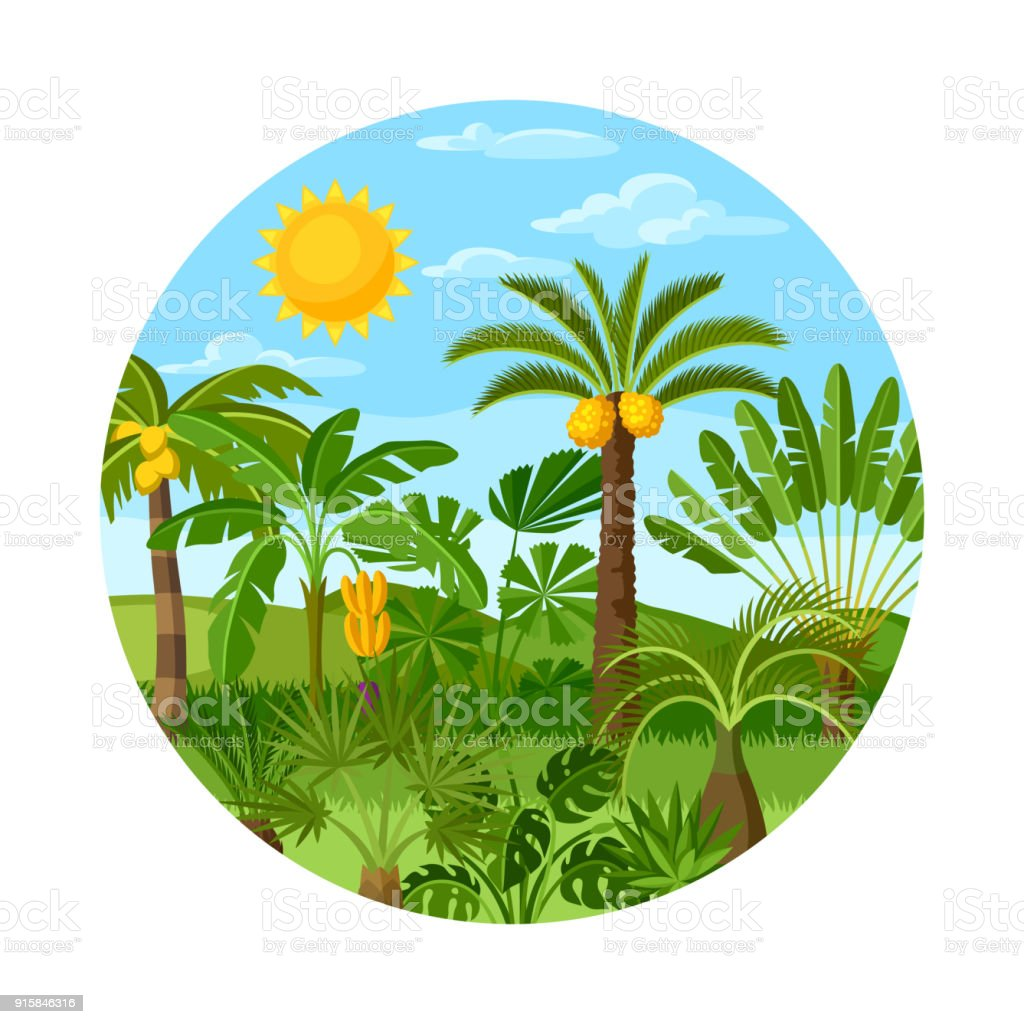 card with tropical palm trees exotic tropical plants illustration of rh istockphoto com jungle vector pack jungle vectoriel free