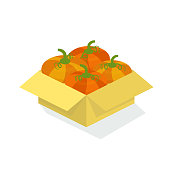 Cardboard box with fresh pumpkins, from the garden of the farm cottage. Agriculture, organic natural clean and healthy products from the farm garden. Isometric vector.
