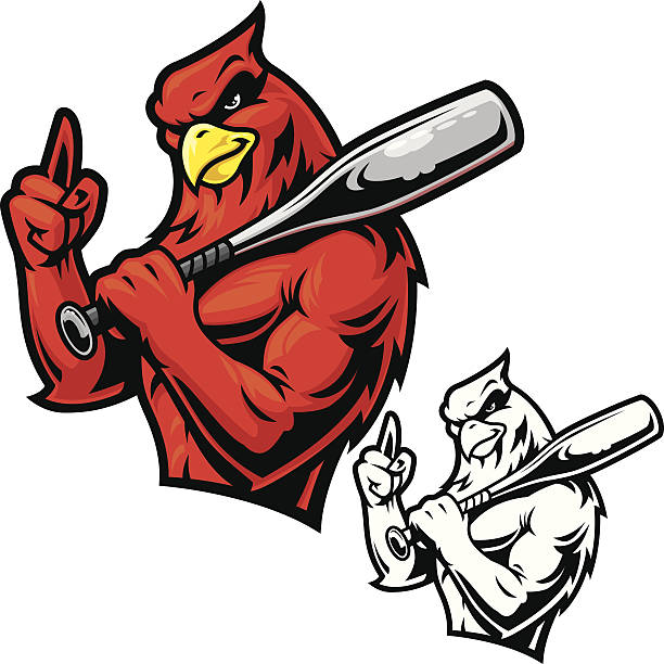 cardinal baseball mascot - cardinal mascot stock illustrations, clip art, cartoons, & icons