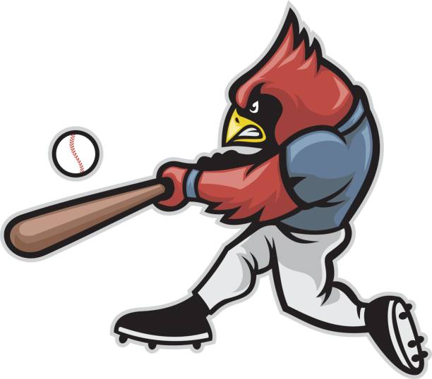 cardinal baseball - cardinal mascot stock illustrations, clip art, cartoons, & icons
