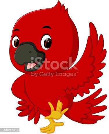 illustration of Cardinal bird cartoon