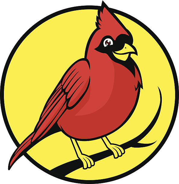 cardinal bird - cardinal mascot stock illustrations, clip art, cartoons, & icons