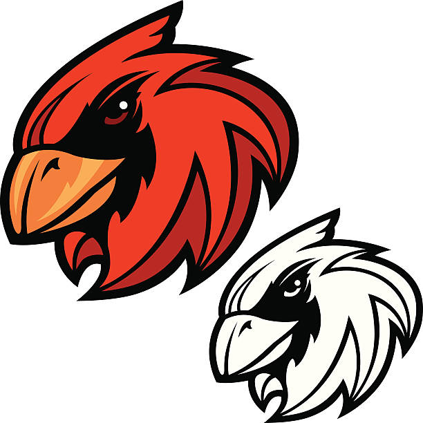 cardinal head mascot - cardinal mascot stock illustrations, clip art, cartoons, & icons