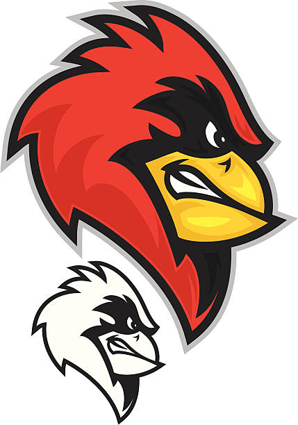 cardinal head - cardinal mascot stock illustrations, clip art, cartoons, & icons