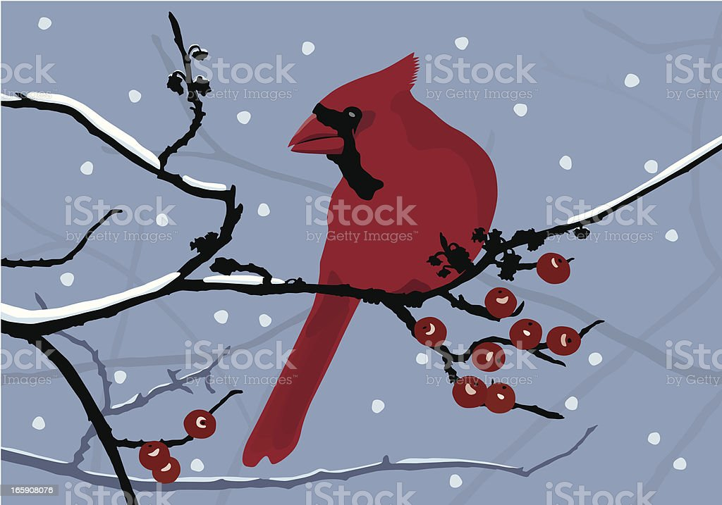 Cardinal in the Snow royalty-free stock vector art