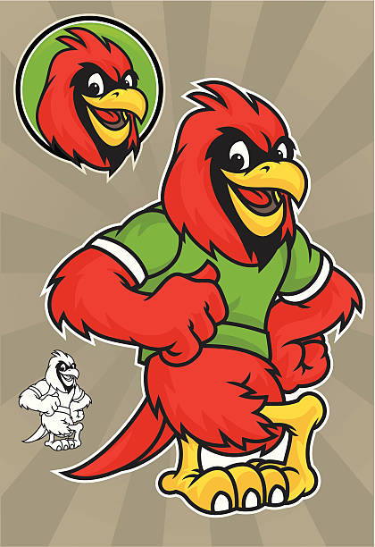 cardinal lean - cardinal mascot stock illustrations, clip art, cartoons, & icons