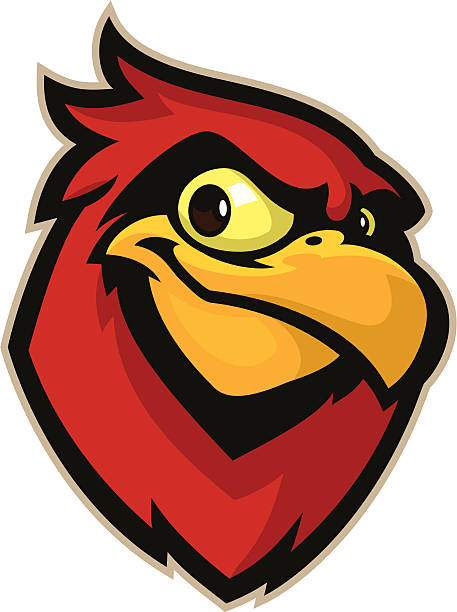 cardinal mascot head - cardinal mascot stock illustrations, clip art, cartoons, & icons