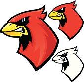 istock Cardinal Mascot 165900152