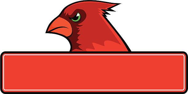 cardinal sign - cardinal mascot stock illustrations, clip art, cartoons, & icons