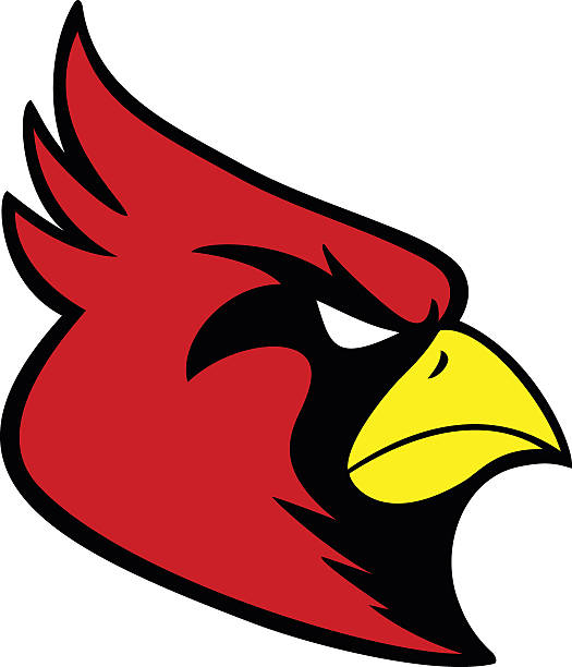 cardinal sports mascot - cardinal mascot stock illustrations, clip art, cartoons, & icons