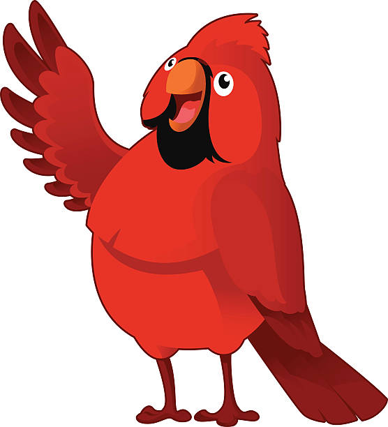 cardinal - cardinal mascot stock illustrations, clip art, cartoons, & icons