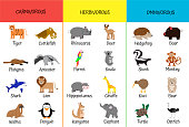 Carnivores, herbivores, omnivores. Animals by category. Educational card for children. Zoology for schoolchildren and preschoolers. Bear, shark, anteater, giraffe, hippo, kiwi, lion, ostrich