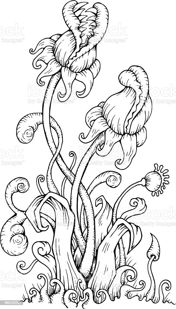 Carnivorous Plants royalty-free carnivorous plants stock vector art & more images of black and white