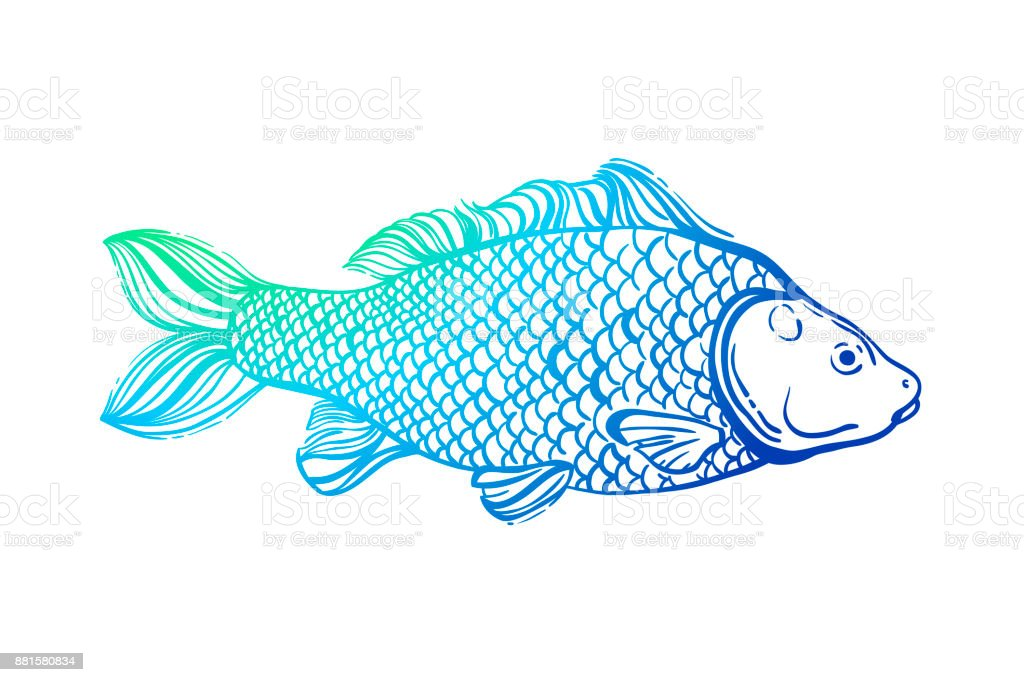Carp. Chinese symbol of good luck, courage, persistence, perseverance, wisdom and vitality. Neon bright outline. Vector illustration. vector art illustration
