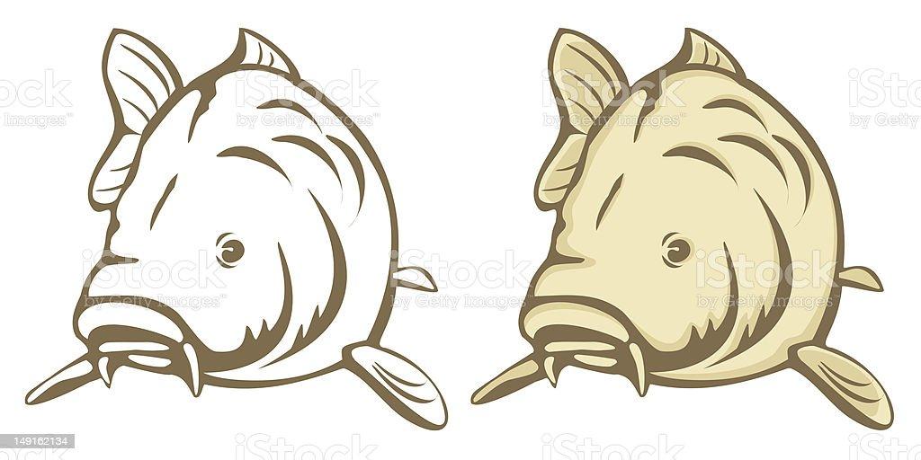 Carp fish vector art illustration