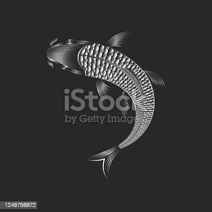 Carp koi fish silhouette top view, linear art for tattoo design or fashion print on clothes.