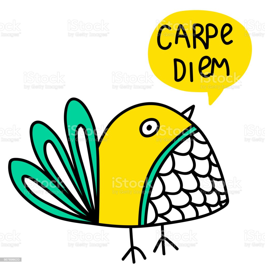 Carpe Diem Lettering And Bird Doodle Illustration Stock Vector Art