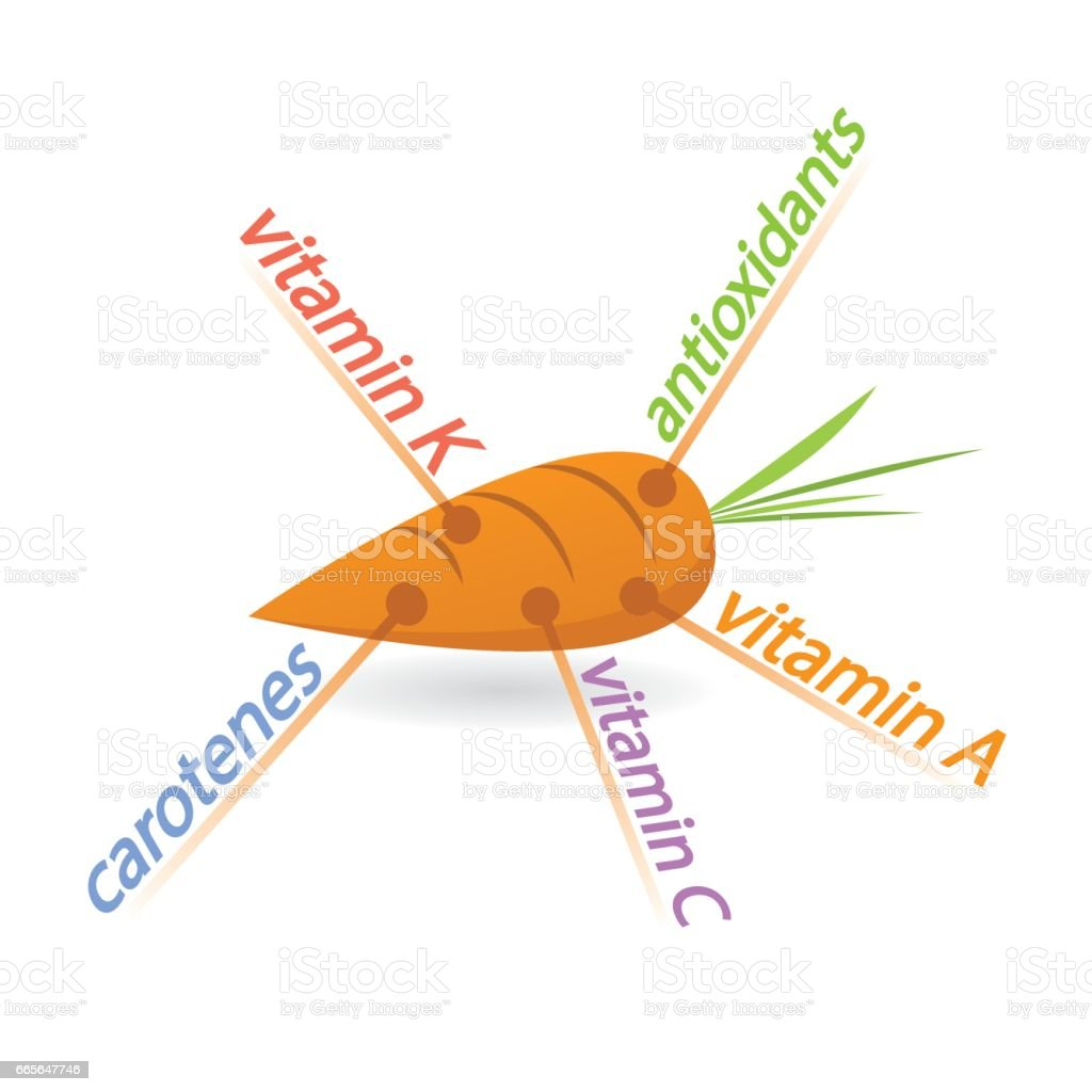 Carrot Content Properties and Benefits vector art illustration