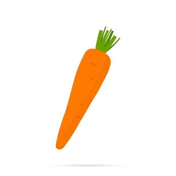 Carrot icon with shadow vector art illustration