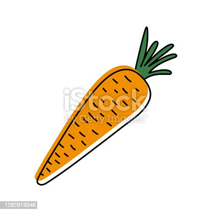istock Carrot isolated on white background. Cute carrot trendy hand drawn doodle style. Vector illustration. 1282919346