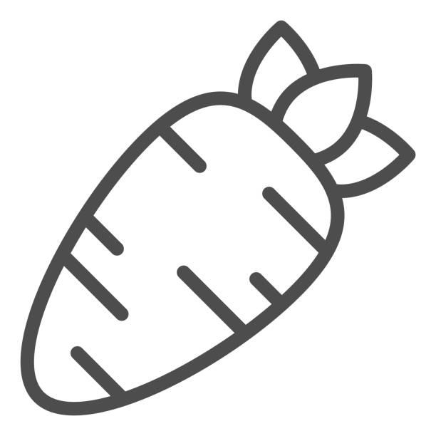 ilustrações de stock, clip art, desenhos animados e ícones de carrot line icon. healthy carrots vegetable outline style pictogram on white background. organic vegetable eco food for mobile concept and web design. vector graphics. - natureza close up