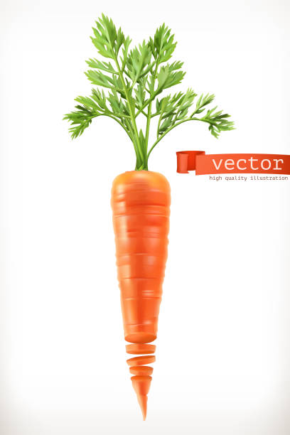 carrot. vegetable 3d vector icon - carrot stock illustrations