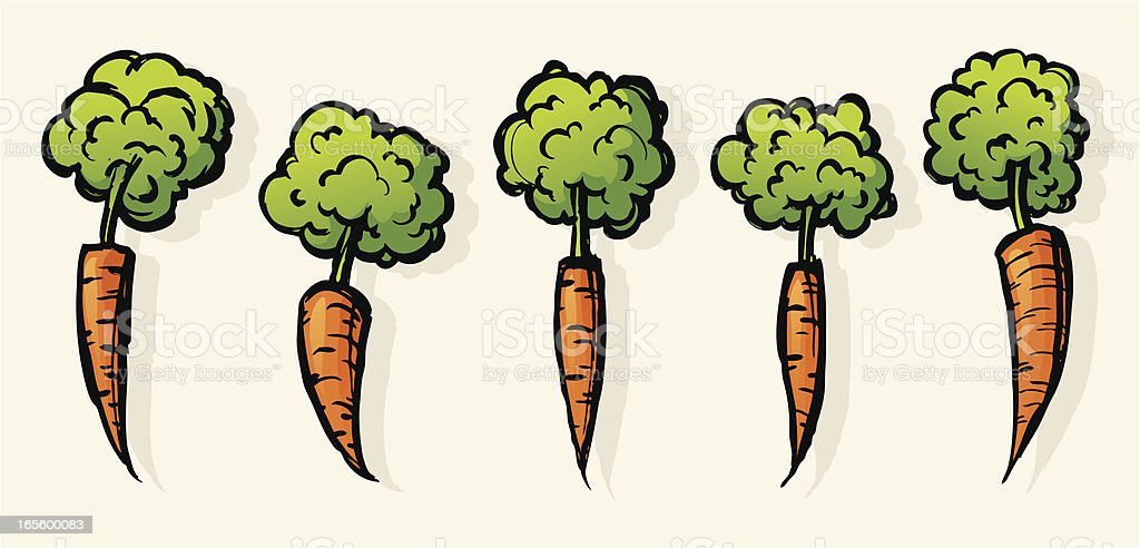Carrots royalty-free carrots stock vector art & more images of agriculture