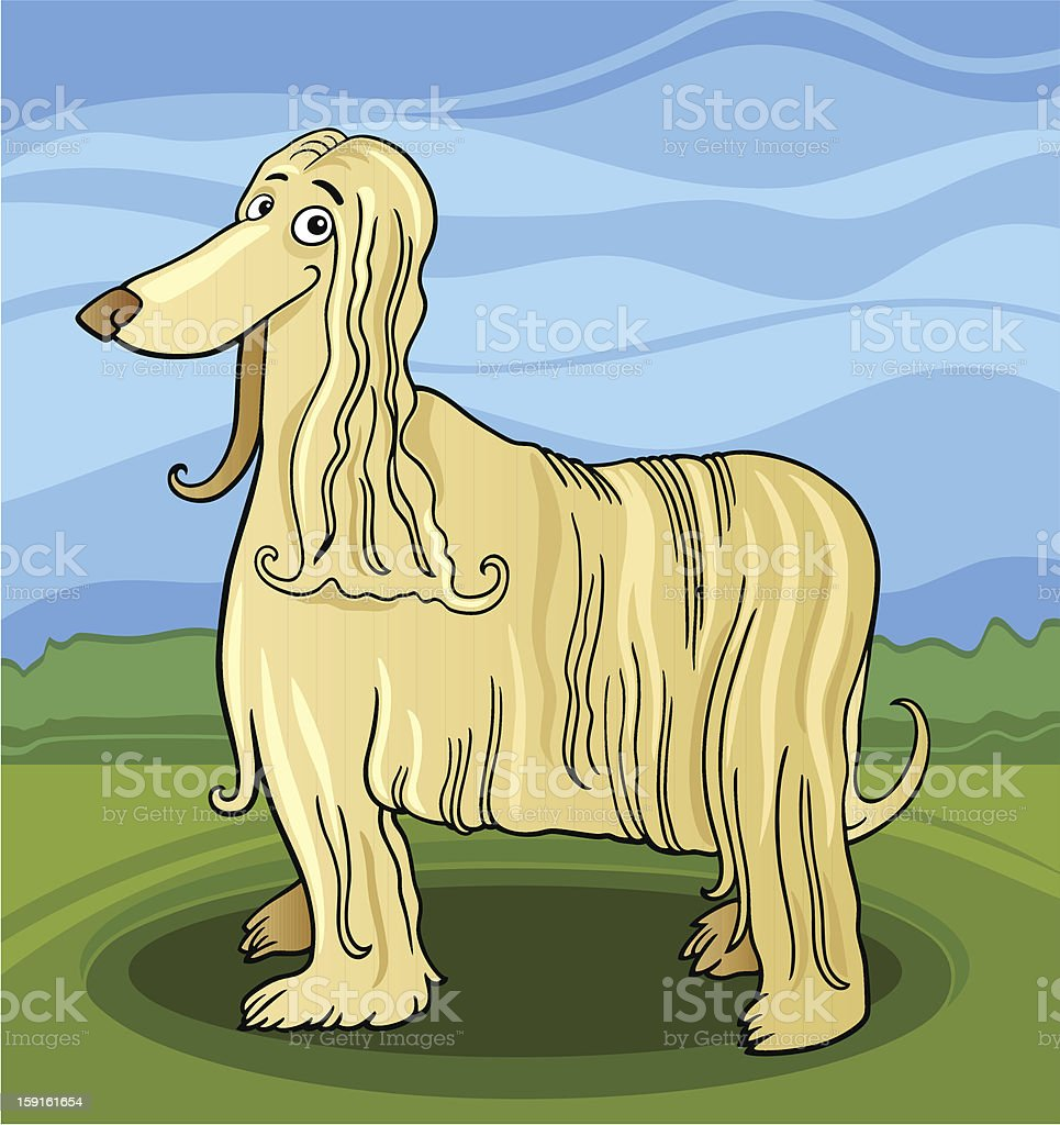 cartoon afghan hound dog royalty-free cartoon afghan hound dog stock vector art & more images of afghan dog