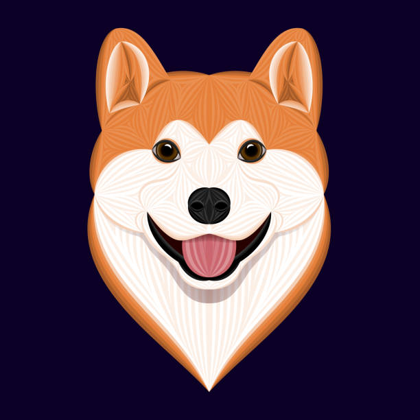 Cartoon Akita Dog, Vector Illustration of Orange Head Akita Inu – artystyczna grafika wektorowa