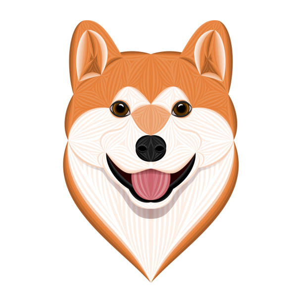 Cartoon Akita Inu, Vector Illustration of Orange Head Akita Dog – artystyczna grafika wektorowa