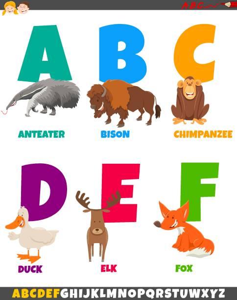 illustrations, cliparts, dessins animés et icônes de alphabet de dessin animé avec des caractères animaux - enseignant(e) en maternelle