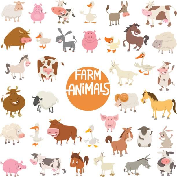 cartoon animal characters large set vector art illustration