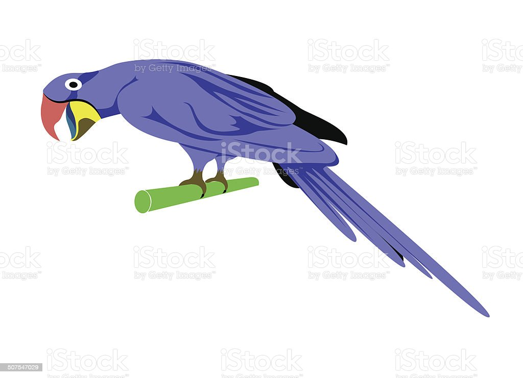 Cartoon animal ,Parrot royalty-free stock vector art